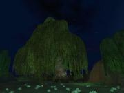 Screenshot by Kluasye