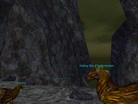 Griffon Master and Pets