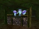 Spore King's Throne