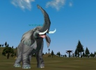 The Elephant: Rare Find on Norrath