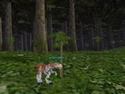 Raptor Roams the Forest