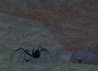 The Primal Arachnid