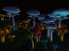 Fungal Forest