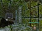 Travelling Through the Narrow Halls