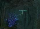 Lurking in the Underwater Tunnel