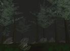 Kithicor Forest