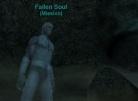 The Fallen Soul