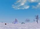 The Frozen Landscape